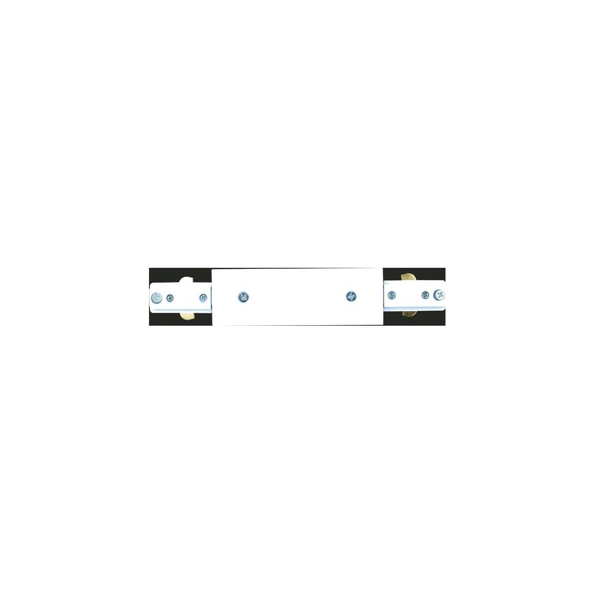 Conector Riel blanco recto Masta