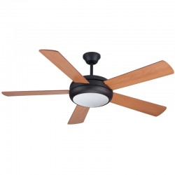 Ceiling fan with Light 132cm Randy Black
