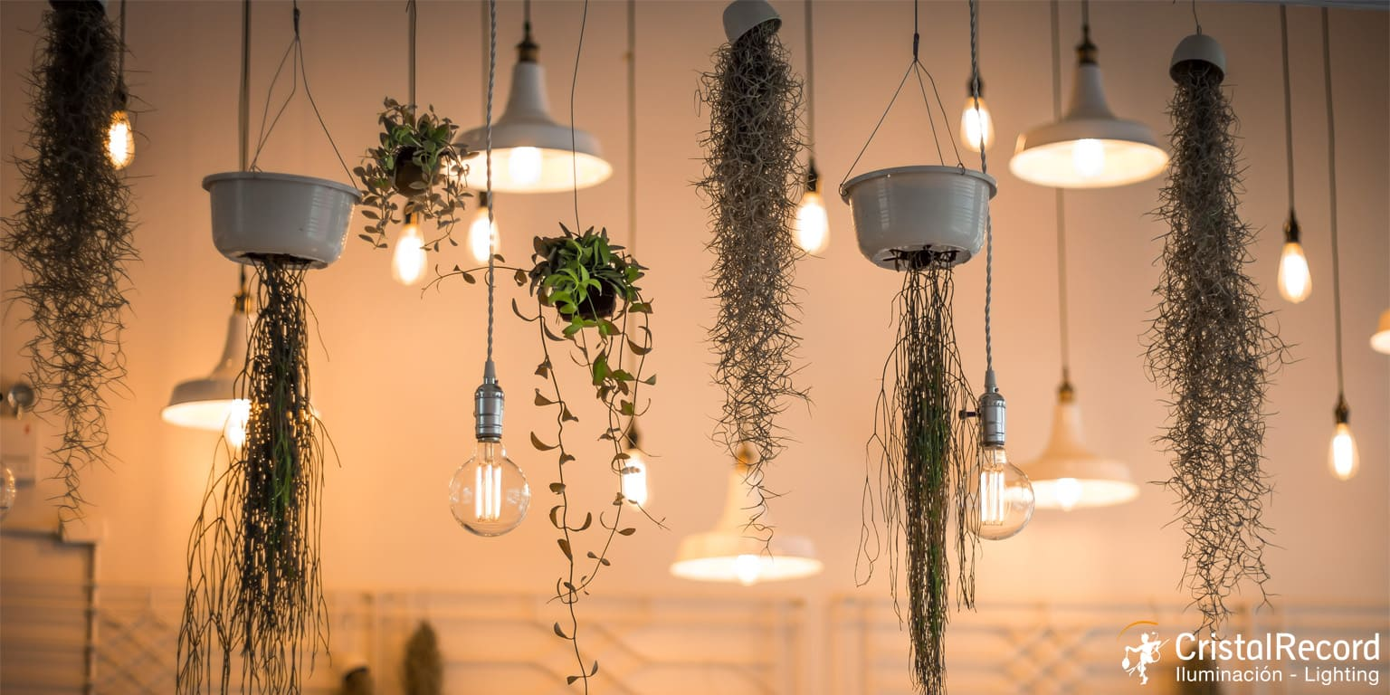 Indoor Lighting CristalRecord